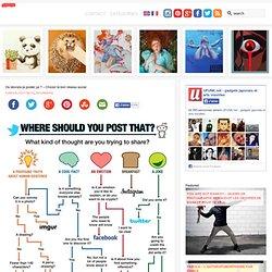 Où devrais-je poster ça ? – Choisir le bon réseau social