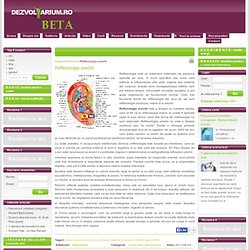 Réflexologie des oreilles