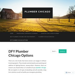 DFY Plumber Chicago Options
