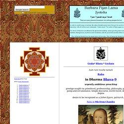 Rahu in dharma bhava 9 - Barbara Pijan Lama Jyotisha