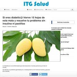 Si eres diabétic@ hierve 15 hojas de esta mata y resuelve tu problema sin insulina ni pastillas