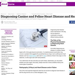 Diagnosing Canine and Feline Heart Disease