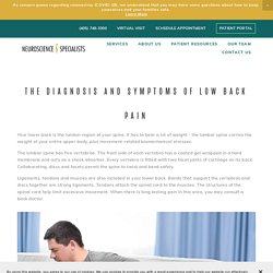 The Diagnosis and Symptoms of Low Back Pain