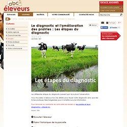 dossier culture : Le diagnostic et l'amélioration des prairies : Les étapes du diagnostic