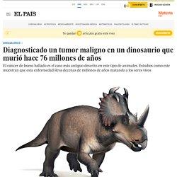 Diagnosticado un tumor maligno en un dinosaurio que murió hace 76 millones de años