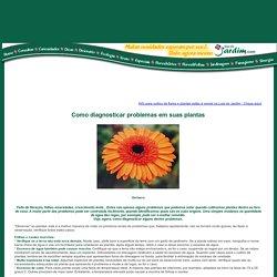 Como diagnosticar problemas em suas plantas