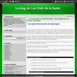 LE SILICIUM & LE DIAPHRAGME, L'INFLAMMATION, LA PTOSE, LES REINS - Le blog de Les Clefs de la Santé