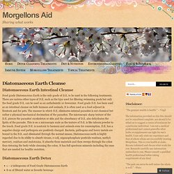 Diatomaceous Earth Cleanse « Morgellons Aid