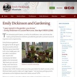 Emily Dickinson and Gardening – Emily Dickinson Museum