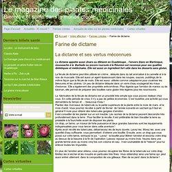 Farine de dictame - Le magazine des plantes médicinales