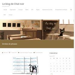 Dictées de phrases – Le blog de Chat noir