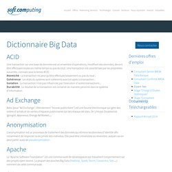 Dictionnaire Big Data