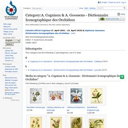 Category:A. Cogniaux & A. Goossens - Dictionnaire Iconographique des Orchidees