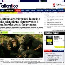Dictionnaire chimpanzé-humain : des scientifiques sont parvenus à traduire les gestes des primates