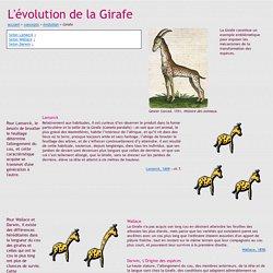 Didac-TIC - L'évolution de la Girafe