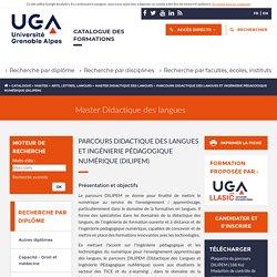 Parcours Didactique des langues et ingénierie pédagogique numérique (Dilipem) - Catalogue des formations