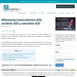 Diferencias entre técnico GIS, analista GIS y consultor GIS
