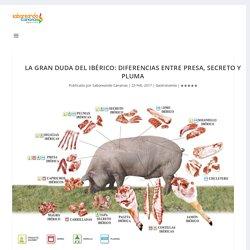 LA GRAN DUDA DEL IBÉRICO: DIFERENCIAS ENTRE PRESA, SECRETO Y PLUMA