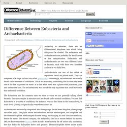 Difference between Eubacteria and Archaebacteria