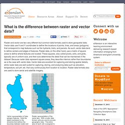 What is the difference between raster and vector data?