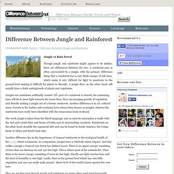 Difference Between Jungle and Rainforest