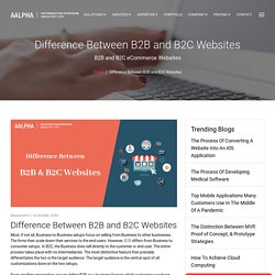 Difference Between B2B and B2C Websites