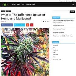Difference Between Hemp and Weed, Marijuana