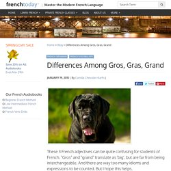 Differences Among Gros, Gras, Grand - Learn French