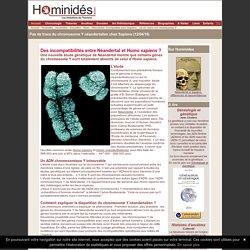 Différences dans le chromosome Y de Néandertal et de Sapiens