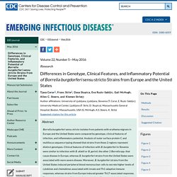 Differences in Genotype, Clinical Features, and Inflammatory Potential of Borrelia burgdorferi sensu stricto Strains from Europe and the United States - Volume 22, Number 5—May 2016