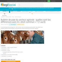 Bulletin de paie du secteur agricole : quelles sont les différences avec le « droit commun » ? (1 sur3) LégiSocial