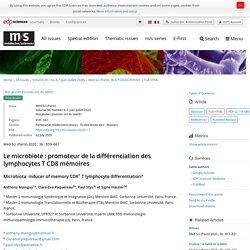 Le microbiote : promoteur de la différenciation des lymphocytes T CD8 mémoires