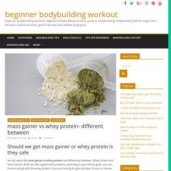 mass gainer vs whey protein- different between - beginner bodybuilding workout