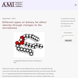 Different types of dietary fat affect obesity through changes to the microbiome — The American Microbiome Institute