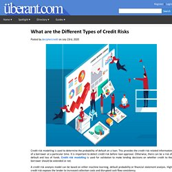 What are the Different Types of Credit Risks