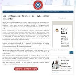 Les différentes formes de cybercrimes existantes