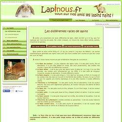 Lapinous.fr site d'informations sur le lapin nain
