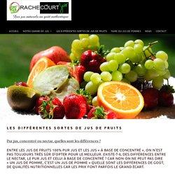 Les différentes sortes de jus de fruits - Rachecourt Jus