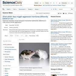 Short winter days trigger aggression hormones differently based on sex: Territorial hamsters reveal biological mechanism behind the difference in male versus female aggression