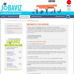 Les différents types de contrats étudiants (CDD, CDI...) - Jobaviz