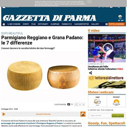Le 7 differenze tra Parmigiano Reggiano e Grana Padano. The 7 differences between Parmigiano Reggiano and Grana Padano