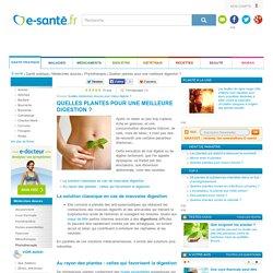 Digestion et dyspepsie : mieux digérer avec les plantes, e-sante.fr