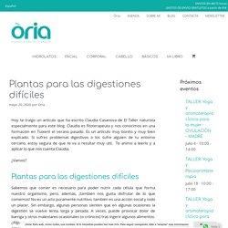 Plantas para las digestiones difíciles - Òria · Cosmética Natural, Artesanal y Respetuosa
