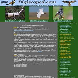 The Digiscoping and DSLR Bird photography Resource