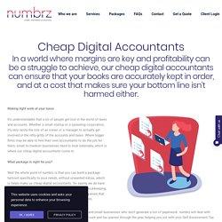 Cheap Digital Accountants