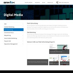 Brinok Digital Advertising services-ppc, social media,ORM