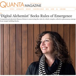A 'Digital Alchemist' Unravels the Mysteries of Complexity