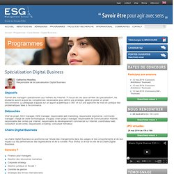 Ecole de Commerce - Master E-commerce - ESG.fr