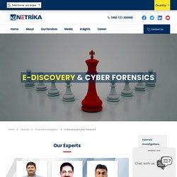 Digital Forensics Services in UAE - Netrika