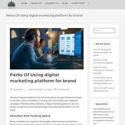 Perks Of Using digital marketing platform for brand - DiggiWeb